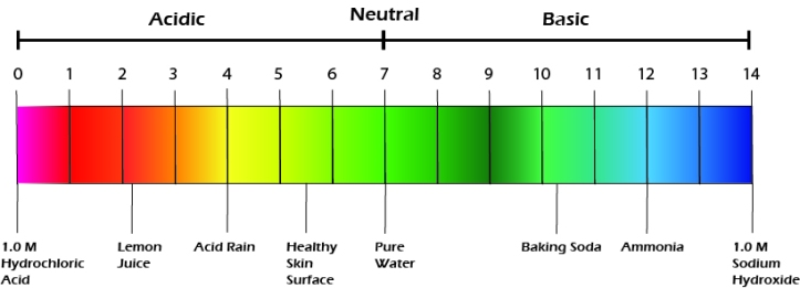 pH scale skincare
