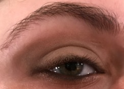 Warm Taupe Eye
