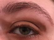Wheat Eye